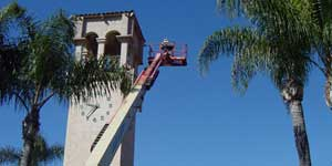 Bee Removal San Diego CA Difficult bee removal using a        manlift.